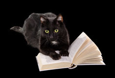 Livro de leitura do gato preto no fundo preto Imagem de Stock Royalty Free