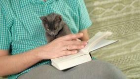 Livro de leitura do homem no sofá em casa vídeos de arquivo