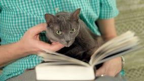 Livro de leitura do homem no sofá em casa video estoque