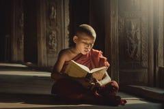 Livro de leitura do principiante com iluminação fotos de stock