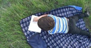 Livro de leitura do rapaz pequeno é mentiras no tapete na grama filme