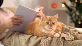 Livro de leitura vermelho do gato e da mulher de gato malhado em casa filme