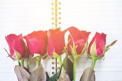 Livro de nota diário da rosa do amor e do vermelho Imagens de Stock