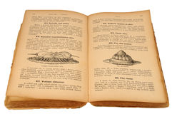 Livro de receitas velho Fotografia de Stock