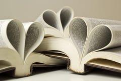 Livro do amor Foto de Stock