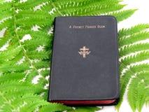 Livro e Fern de oração imagem de stock royalty free