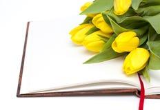 Livro e flores brancas nele Fotografia de Stock Royalty Free