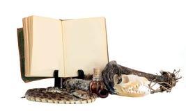 Livro e ingredientes da poção das bruxas Imagem de Stock Royalty Free