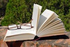 Livro e vidros Imagem de Stock Royalty Free