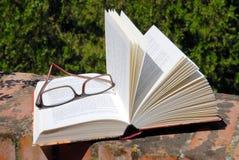 Livro e vidros Foto de Stock
