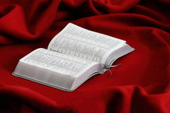 Livro em um veludo vermelho bible Imagens de Stock Royalty Free