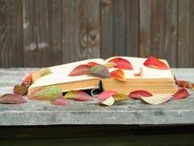 Livro esquecido que encontra-se em um banco de madeira espalhado com folhas de outono Imagem de Stock