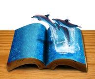 Livro mágico isolado com três golfinhos fotografia de stock