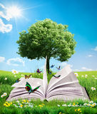 Livro mágico verde Fotos de Stock