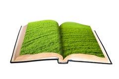 Livro mágico Imagem de Stock