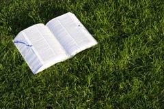 Livro na grama Foto de Stock Royalty Free