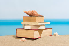 Livro na praia Fotografia de Stock Royalty Free