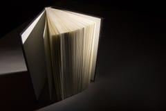 Livro nas sombras Foto de Stock Royalty Free