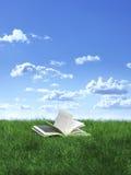 Livro no gramado foto de stock