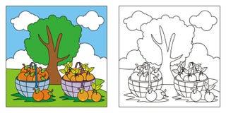 Livro para colorir bonito da natureza para crian?as ilustração do vetor