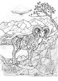 Livro para colorir com o argali, arkhar Foto de Stock