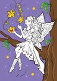 Livro para colorir do duende feericamente que senta-se no ramo Ilustração do Vetor