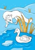 Livro para colorir do Fox e do pato Ilustração do Vetor