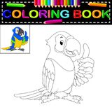 Livro para colorir do papagaio Fotografia de Stock Royalty Free