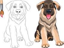 Livro para colorir do pastor do filhote de cachorro Imagens de Stock