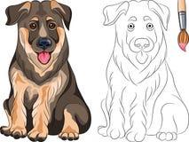 Livro para colorir do pastor do filhote de cachorro Foto de Stock Royalty Free