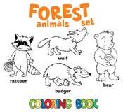 Livro para colorir dos animais da floresta Fotos de Stock