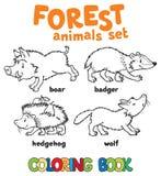 Livro para colorir dos animais da floresta Fotografia de Stock Royalty Free