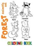 Livro para colorir dos animais da floresta Foto de Stock Royalty Free