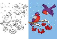 Livro para colorir dos dom-fafe que sentam-se no ramo Ilustração Stock