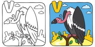 Livro para colorir engraçado do abutre Alfabeto V Fotografia de Stock Royalty Free