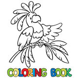 Livro para colorir ou imagem da coloração do papagaio engraçado Foto de Stock Royalty Free