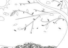 Livro para colorir - paisagem do outono com a árvore com folhas de queda Imagens de Stock Royalty Free