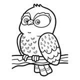Livro para colorir para crianças, coruja pequena ilustração royalty free