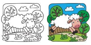 Livro para colorir pequeno dos carneiros Imagem de Stock