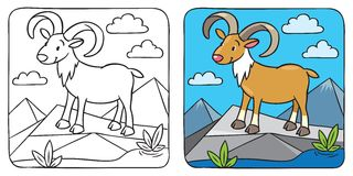 Livro para colorir selvagem engraçado urial ou da ram Fotografia de Stock Royalty Free