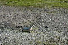 Livro perdido no parque de estacionamento imagem de stock