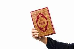 Livro sagrado do Alcorão à disposição - da mulher disponivel dos muçulmanos do Alcorão dos muçulmanos (artigo público de todos os imagem de stock royalty free