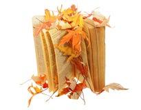 Livro sob as folhas Imagens de Stock