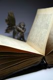 Livro velho 5 Imagens de Stock