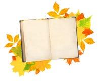 Livro velho e folhas de outono ilustração stock
