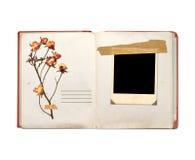Livro velho e fotos Foto de Stock Royalty Free