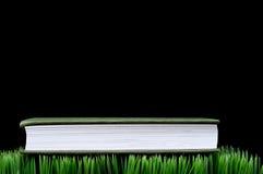 Livro Verde na grama imagens de stock royalty free