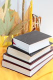 Livros Foto de Stock Royalty Free
