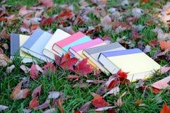 Livros coloridos esquecidos Imagem de Stock