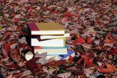 Livros coloridos esquecidos Foto de Stock Royalty Free